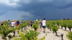 le temps change sur les balades vigneronnes en minervois sucré salé en languedoc