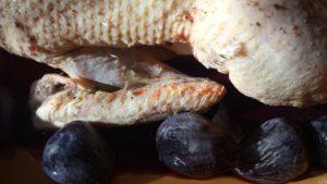 canette aux figues sucré salé en languedoc