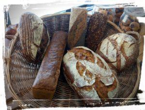je les aime tous, arbre à pains à faugères sucré salé en languedoc